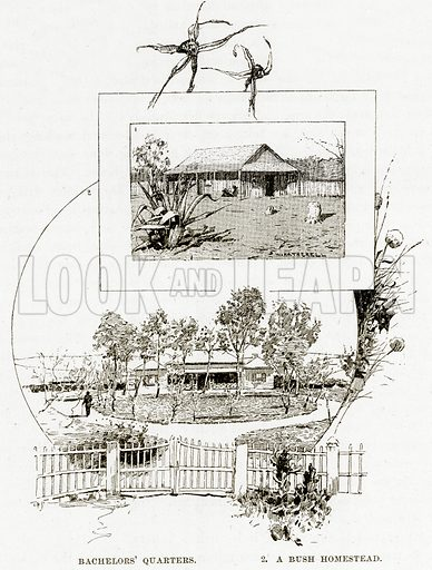 Bachelors' quarters. 2. A Bush homestead. Illustration from Cassell's Picturesque Australasia by EE Morris (c 1889).