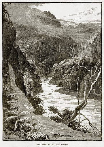 The Descent to the Dargo. Illustration from Cassell's Picturesque Australasia by EE Morris (c 1889).