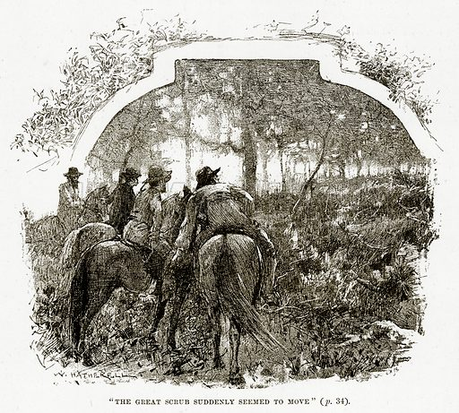 """""""The Great scrub suddenly seemed to move"""". Illustration from Cassell's Picturesque Australasia by EE Morris (c 1889)."""