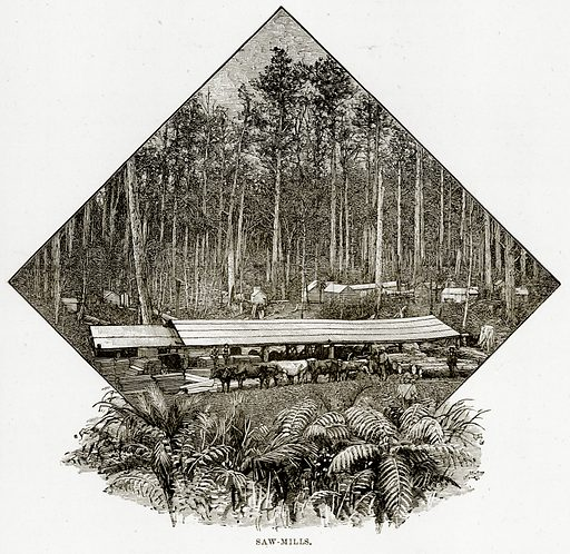 Saw-Mills. Illustration from Cassell's Picturesque Australasia by EE Morris (c 1889).