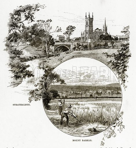 Strathalbyn. Mount Barker. Illustration from Cassell's Picturesque Australasia by EE Morris (c 1889).