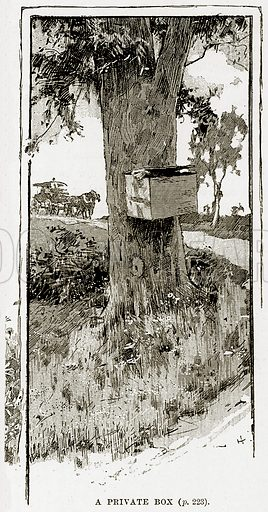 A Private Box. Illustration from Cassell's Picturesque Australasia by EE Morris (c 1889).