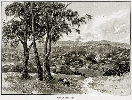 Castlemaine. Illustration from Cassell's Picturesque Australasia by EE Morris (c 1889).