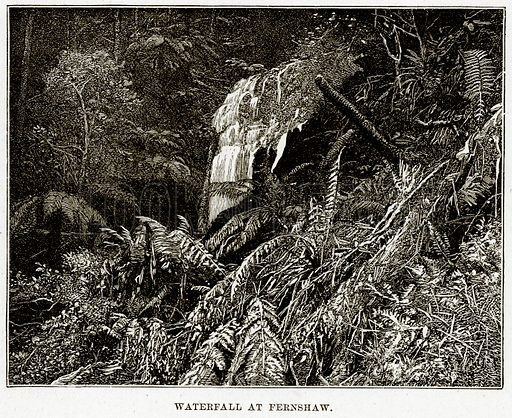 Waterfall at Fernshaw. Illustration from Cassell's Picturesque Australasia by EE Morris (c 1889).