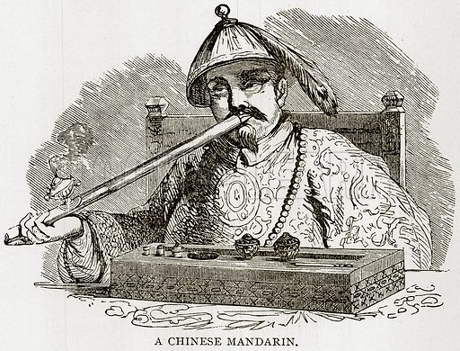A Chinese Mandarin. Illustration from Error