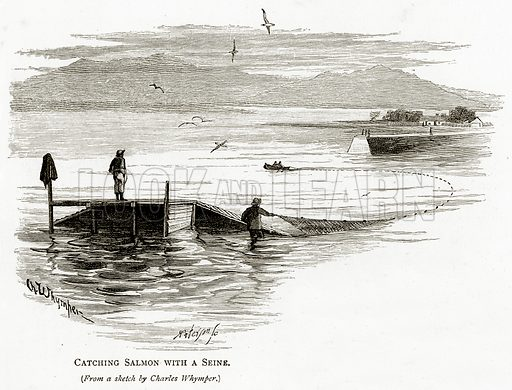 Catching Salmon with a Seine. Illustration from Irish Pictures by Richard Lovett (Religious Tract Society, 1888).