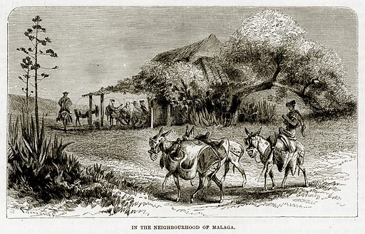 In the Neighbourhood of Malaga. Illustration from The Mediterranean Illustrated (T Nelson, 1880).