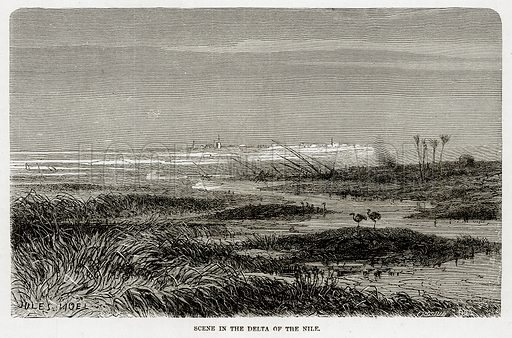 Scene in the delta of the Nile. Illustration from The Mediterranean Illustrated (T Nelson, 1880).