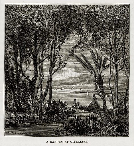 A Garden at Gibraltar. Illustration from The Mediterranean Illustrated (T Nelson, 1880).