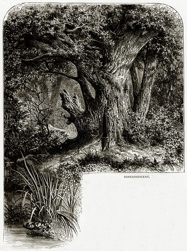 Fontainebleau. Illustration from French Pictures by Samuel Green (Religious Tract Society, c 1880).