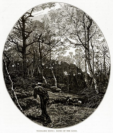 Woodland scane: Banks of the Loire. Illustration from French Pictures by Samuel Green (Religious Tract Society, c 1880).
