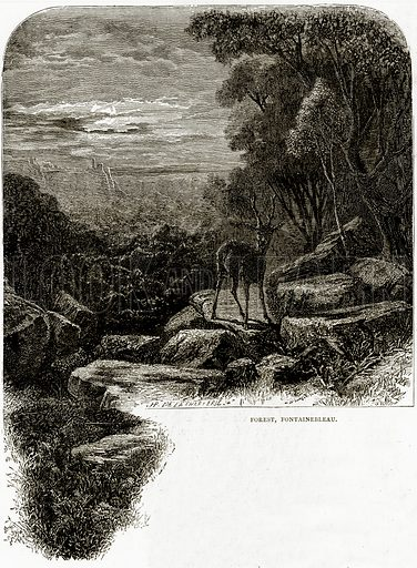 Forest, Fontainebleau. Illustration from French Pictures by Samuel Green (Religious Tract Society, c 1880).