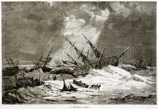 In the Arctic Ocean. Illustration from Sea Pictures by James Macaulay (Religious Tract Society, c 1880).