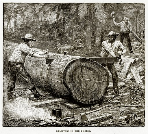 Splitters in the Forest. Illustration from Australian Pictures by Howard Willoughby (Religious Tract Society, c 1886).
