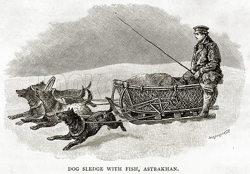 Dog Sledge with fish, Astrakhan. Illustration from Russian Pictures by Thomas Michell (Religious Tract Society, 1889).