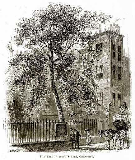 The tree in Wood Street, Cheapside. Illustration from London Pictures by Richard Lovett (Religious Tract Society, 1890).