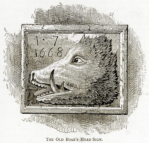 The Old Boar