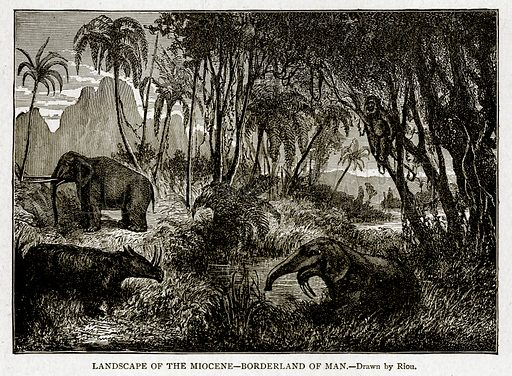 Landscape of the Miocene--Borderland of Man. Illustration from With the World