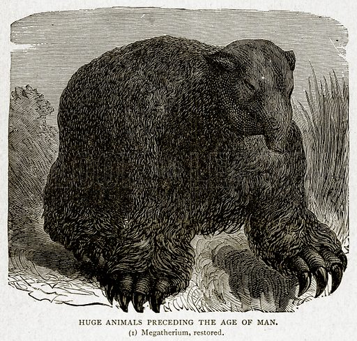 Huge Animals preceding the Age of Man. (1) Megatherium, restored. Illustration from With the World