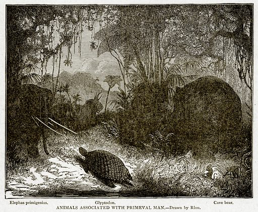 Animals associated with Primeval Man. Elephas Primigenius. Glyptodon. Cave bear. Illustration from With the World