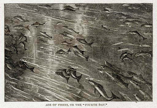 """Age of Fishes, or the """"Fourth Day."""" Illustration from With the World"""