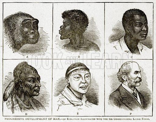 Progressive Development of Man.--(2) Evolution. Illustration from With the World