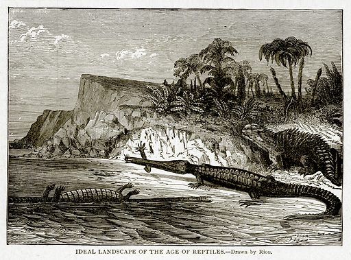 Ideal Landscape of the Age of Reptiles. Illustration from With the World