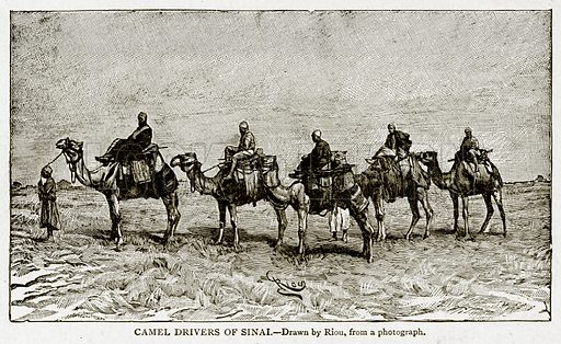 Camel Drivers of Sinai. Illustration from With the World's People by John Clark Ridpath (Clark E Ridpath, 1912).