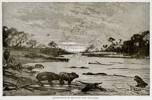 Savage Beasts of the Upper Nile. Illustration from With the World's People by John Clark Ridpath (Clark E Ridpath, 1912).