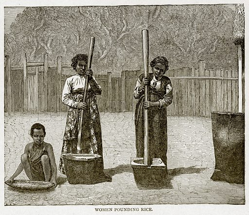 Women pounding Rice. Illustration from With the World's People by John Clark Ridpath (Clark E Ridpath, 1912).