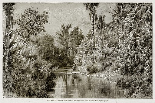 Bornean Landscape.--River view. Illustration from With the World's People by John Clark Ridpath (Clark E Ridpath, 1912).