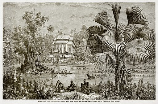 Siamese Landscape.--Pagoda and Rice Field at Muong Mai. Illustration from With the World's People by John Clark Ridpath (Clark E Ridpath, 1912).