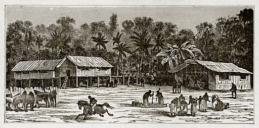 Malay village. Illustration from With the World's People by John Clark Ridpath (Clark E Ridpath, 1912).