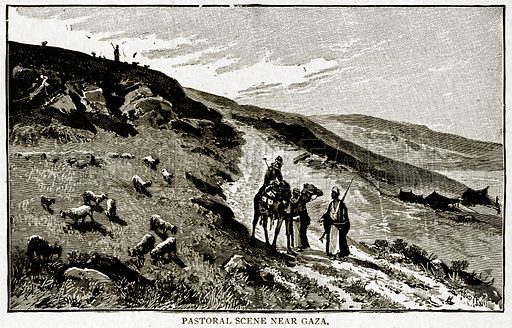 Pastoral Scene near Gaza. Illustration from With the World's People by John Clark Ridpath (Clark E Ridpath, 1912).