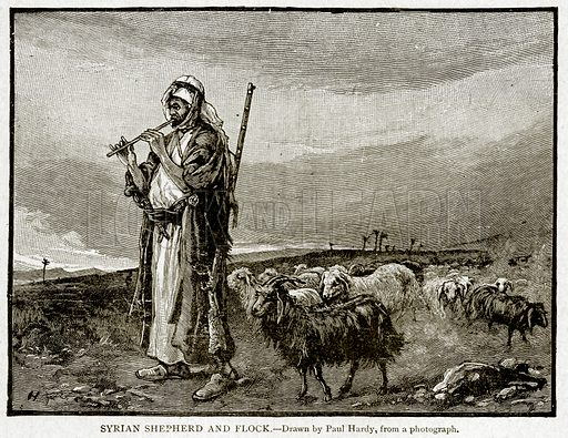 Syrian Shepherd and Flock. Illustration from With the World's People by John Clark Ridpath (Clark E Ridpath, 1912).