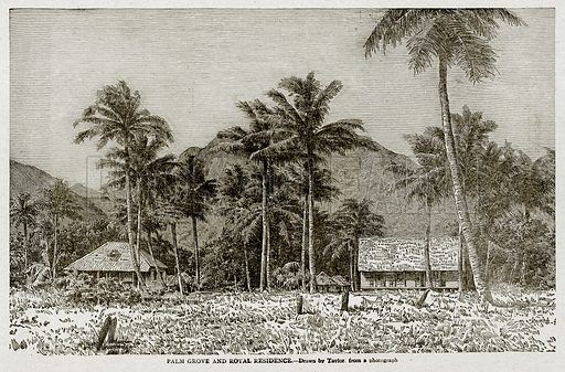 Palm Grove and Royal Residence. Illustration from With the World's People by John Clark Ridpath (Clark E Ridpath, 1912).