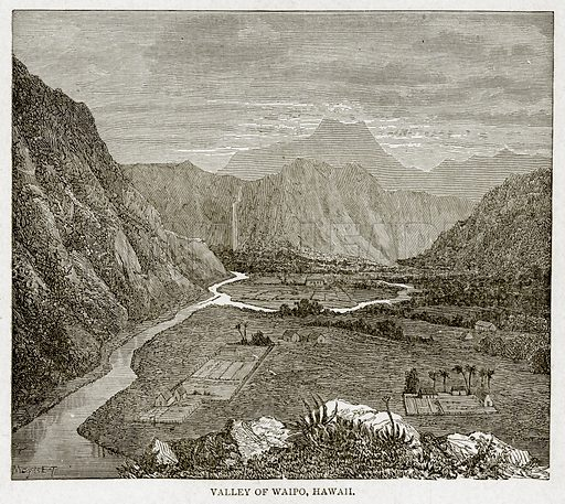 Valley of Waipo, Hawaii. Illustration from With the World's People by John Clark Ridpath (Clark E Ridpath, 1912).