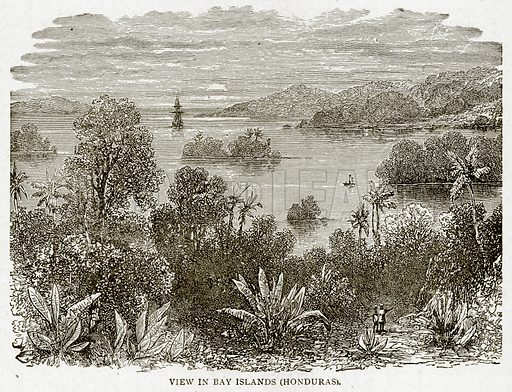 View in Bay Islands (Honduras). Illustration from With the World