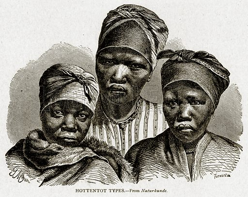 Hottentot Types. Illustration from With the World's People by John Clark Ridpath (Clark E Ridpath, 1912).