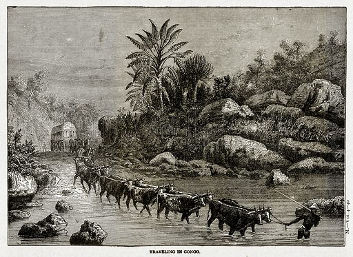 Traveling in Congo. Illustration from With the World's People by John Clark Ridpath (Clark E Ridpath, 1912).