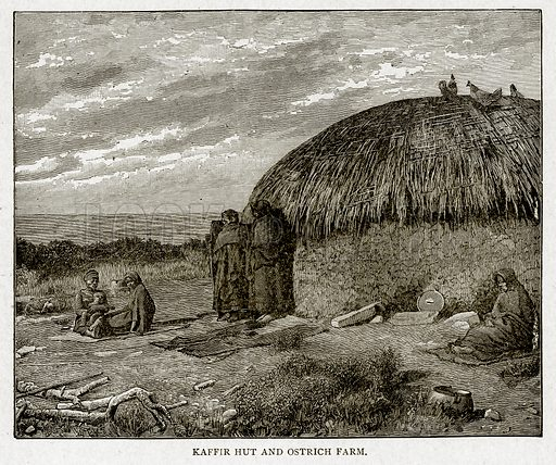 Kaffir Hut and Ostrich Farm. Illustration from With the World's People by John Clark Ridpath (Clark E Ridpath, 1912).