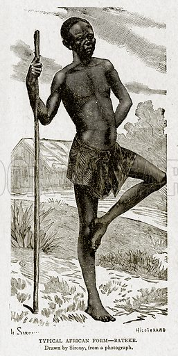 Typical African Form--Bateke. Illustration from With the World's People by John Clark Ridpath (Clark E Ridpath, 1912).