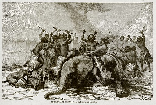 An Elephant Feast. Illustration from With the World