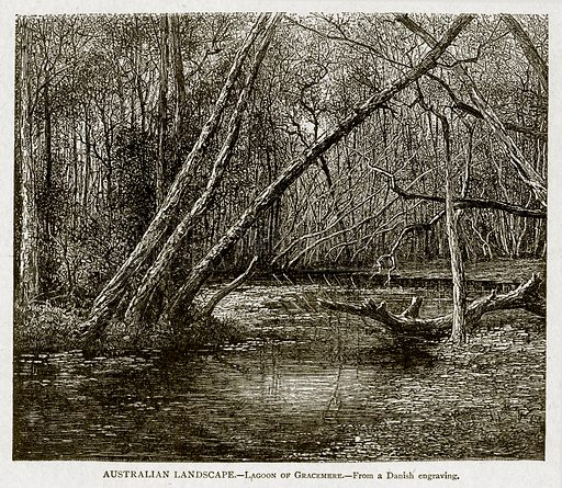 Australian Landscape. – Lagoon of Gracemere. Illustration from With the World's People by John Clark Ridpath (Clark E Ridpath, 1912).