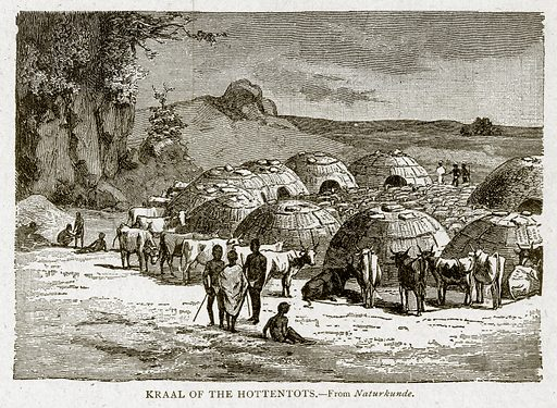 Kraal of the Hottentots. Illustration from With the World's People by John Clark Ridpath (Clark E Ridpath, 1912).
