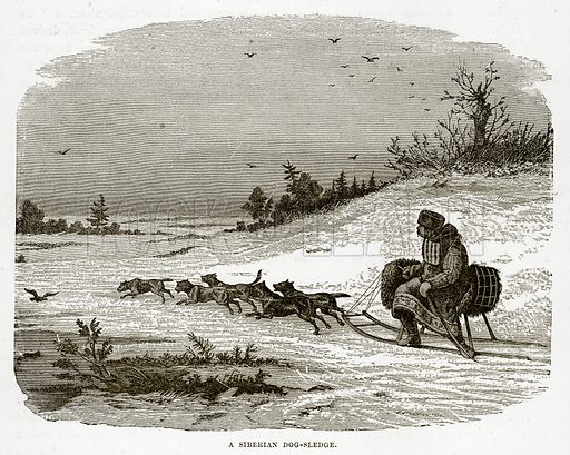 A Siberian Dog-Sledge. Illustration from The Countries of the World by Robert Brown (Cassell, c 1890).
