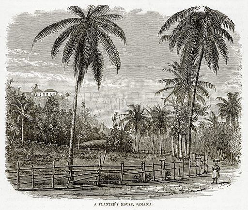 A Planter's House, Jamaica. Illustration from The Countries of the World by Robert Brown (Cassell, c 1890).
