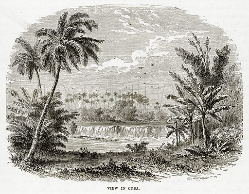 View in Cuba. Illustration from The Countries of the World by Robert Brown (Cassell, c 1890).