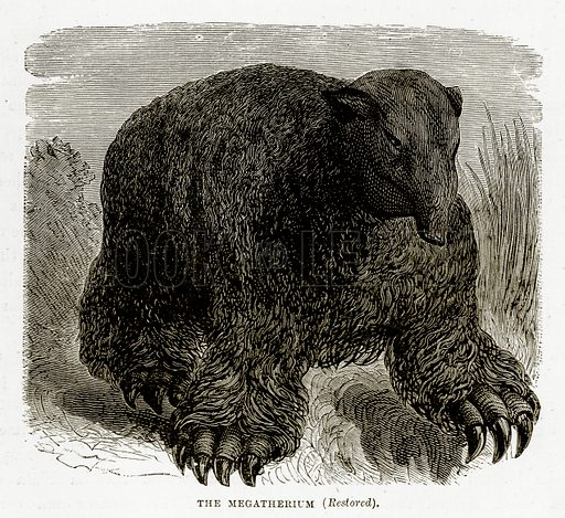 The Megatherium (Restored). Illustration from The Countries of the World by Robert Brown (Cassell, c 1890).