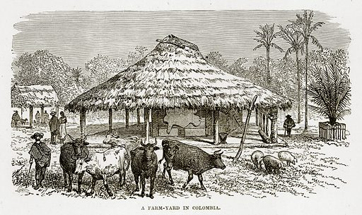 A Farm-Yard in Colombia. Illustration from The Countries of the World by Robert Brown (Cassell, c 1890).